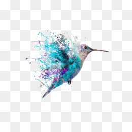 Hummingbird, Bird, Watercolor Painting, Turquoise PNG image with transparent background