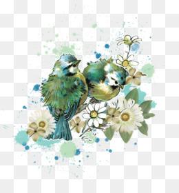 Love Birds PNG - Blue Love Birds, Love Birds On Branch