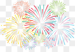 Fireworks, Animation, Drawing, Recreation, Flower PNG image with transparent background