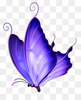 Butterfly PNG - Pink Butterfly, Butterfly Vector, Purple Butterfly