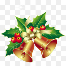 Christmas, Christmas Ornament, Christmas Decoration, Flower PNG image with transparent background