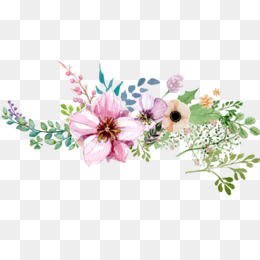 Watercolour Flowers, Flower, Watercolor Painting, Pink PNG image with transparent background