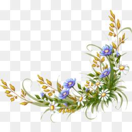 Free download Adobe Illustrator Royalty-free - Beautiful