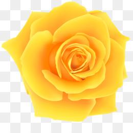 Free Download Rose Yellow Clip Art Yellow Rose Png Clip Art Image Png