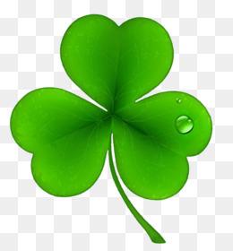 Ireland, National Shamrockfest, Public Holiday, Leaf, Petal PNG image with transparent background