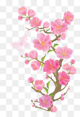 Flower, Pink Flowers, Petal, Pink, Heart PNG image with transparent background