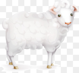 Sheep, Goat, Cattle, Goat Antelope PNG image with transparent background