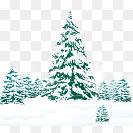 Christmas, Christmas Tree, Snow, Fir, Pine Family PNG image with transparent background