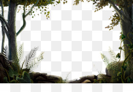 Nature, Display Resolution, Download, Window, Grass PNG image with transparent background