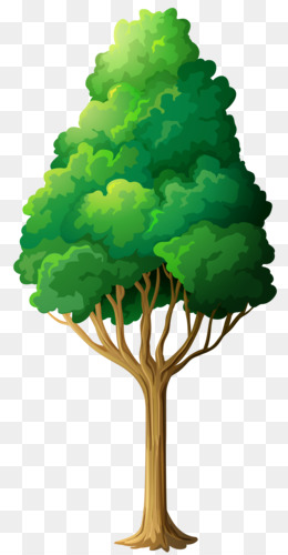 Tree, Computer Icons, Cartoon, Plant, Leaf PNG image with transparent background