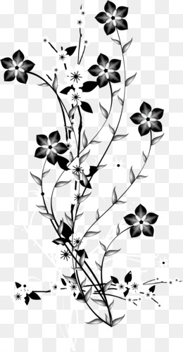 China, Flower, Graphic Arts, Symmetry, Point PNG image with transparent background