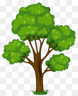 Tree, Royalty Free, Blog, Plant, Leaf PNG image with transparent background
