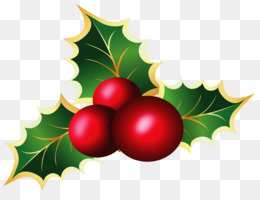 Common Holly, Candy Cane, Mistletoe, Computer Wallpaper, Christmas Ornament PNG image with transparent background