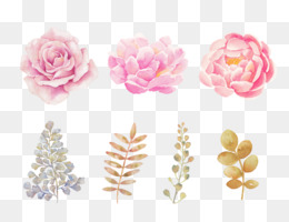 Watercolor Flowers, Watercolor Painting, Flower, Pink PNG image with transparent background