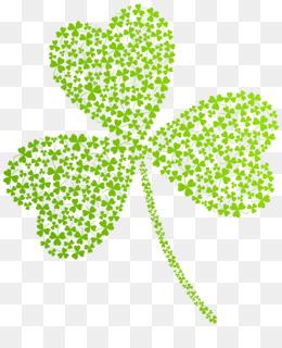 St Patrick S Day Shamrocks, Saint Patrick S Day, Shamrock, Plant, Flora PNG image with transparent background