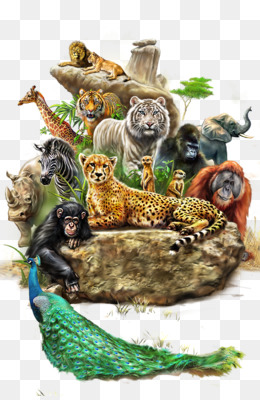 Lion, Baboons, Animal, Wildlife, Art PNG image with transparent background