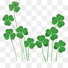Ireland, Public Holiday, Saint Patrick S Day, Plant, Leaf PNG image with transparent background