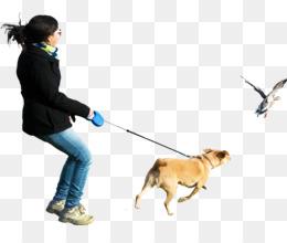 Perro De Presa Canario, Walking, Computer Icons, Dog Walking, Human Behavior PNG image with transparent background