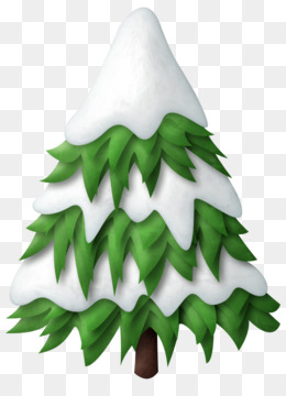 Pine, Fir, Tree, Pine Family PNG image with transparent background