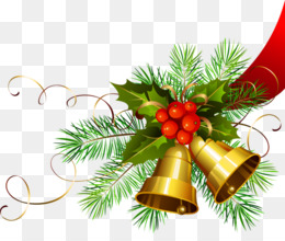 Royal Christmas Message, Christmas Card, Christmas, Evergreen, Pine Family PNG image with transparent background