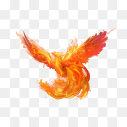 Download, Rgb Color Model, Flame, Orange, Wing PNG image with transparent background