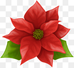 christmas poinsettia png and psd free download poinsettia clip art rh kisspng com christmas poinsettia clip art free Christmas Wreath Clip Art