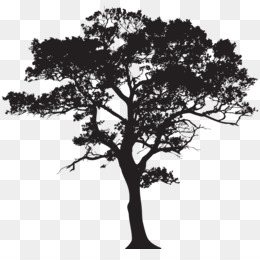 Tree, Silhouette, Royalty Free, Plant PNG image with transparent background