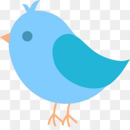 Bird, Western Bluebird, Mountain Bluebird, Beak, Blue PNG image with transparent background