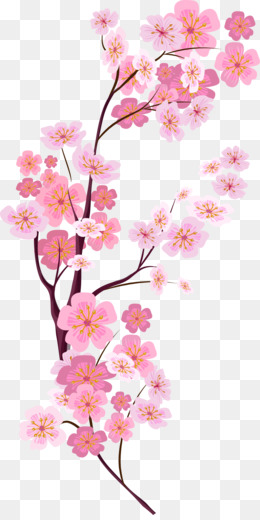 Cherry blossom png cherry blossom transparent clipart free png mightylinksfo