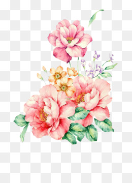 Watercolour Flowers, Watercolor Painting, Flower, Pink, Plant PNG image with transparent background