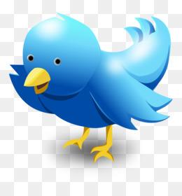 Bird Bird PNG - Bird, Birds, Flying Bird, Love Birds, Bird