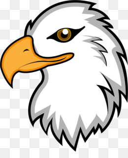 free download bald eagle clip art eagle mascot clipart png rh kisspng com eagle head mascot clipart