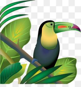 free download amazon rainforest tropical rainforest jungle clip art rh kisspng com