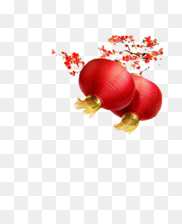 Plum Blossom, Chinese New Year, Lantern, Petal, Computer Wallpaper PNG image with transparent background