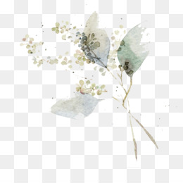 Watercolor Painting, Flower, Art, Plant PNG image with transparent background