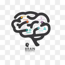 human brain graphic design diagram - brain