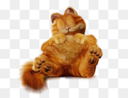 Garfield And Friends PNG PSD Free Download