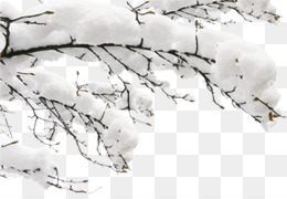 Snow, Winter, Fundal, Monochrome Photography PNG image with transparent background
