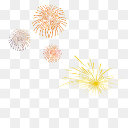 Sumidagawa Fireworks Festival, Fireworks, Adobe Fireworks, Flower, Symmetry PNG image with transparent background