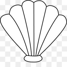 seashell clam black and white clip art shells clipart png download rh kisspng com shells clipart free download shells clipart black and white