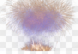 Purple, Fur, Feather PNG image with transparent background