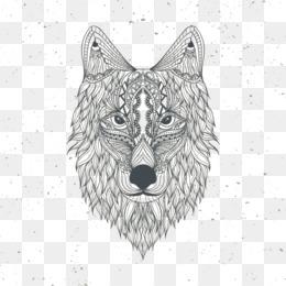 Fox Png Png Transparente Y Fox Png Dibujo Lobo Gris Libro Para