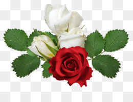 Rose Creative Png Rose Creative Transparent Clipart Free Download