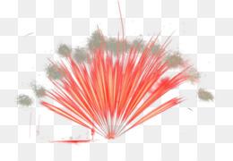Closeup, Petal, Line PNG image with transparent background
