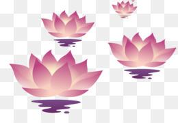 Lantern Festival, Lantern, Download, Pink, Plant PNG image with transparent background