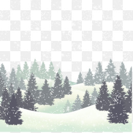 Wedding Invitation, Wedding, Winter, Fir, Pine Family PNG image with transparent background