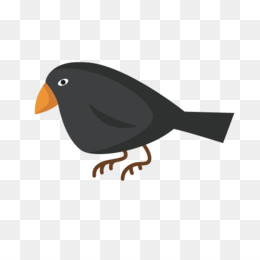 108+  Gambar Burung Gagak Kartun HD  Gratis