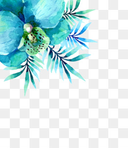 Turquoise PNG & Turquoise Transparent Clipart Free Download ...