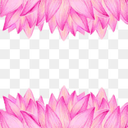 Free Download Nelumbo Nucifera Buddhism Flower Euclidean