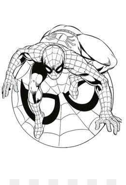 Spider Man Ben Parker Clip Art Spider Man Logo Cliparts 521506